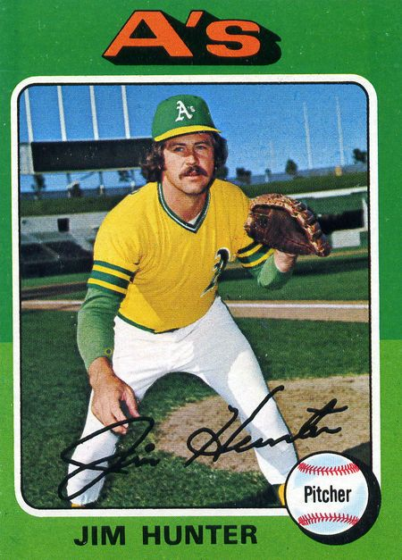 Catfish-hunter